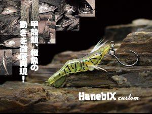 image01hanec